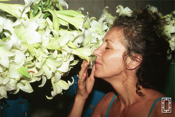 Head Massage (Ros smells the Lillies)