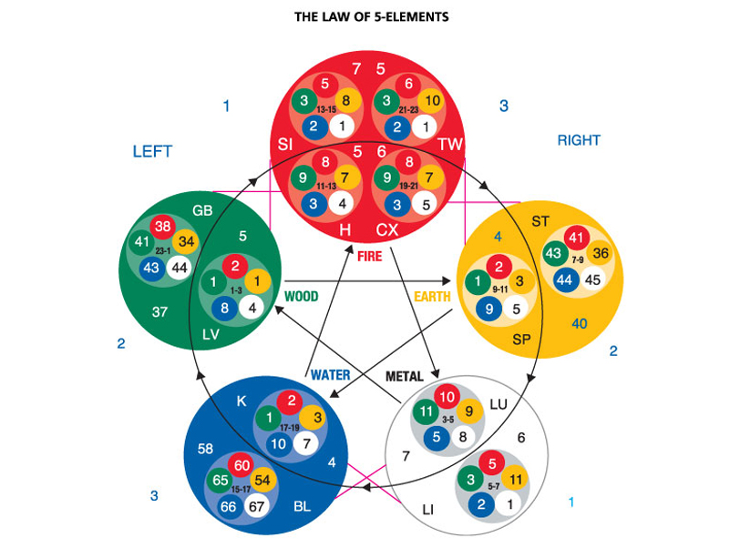 Touch for Health (The Law of Five Elements chart)